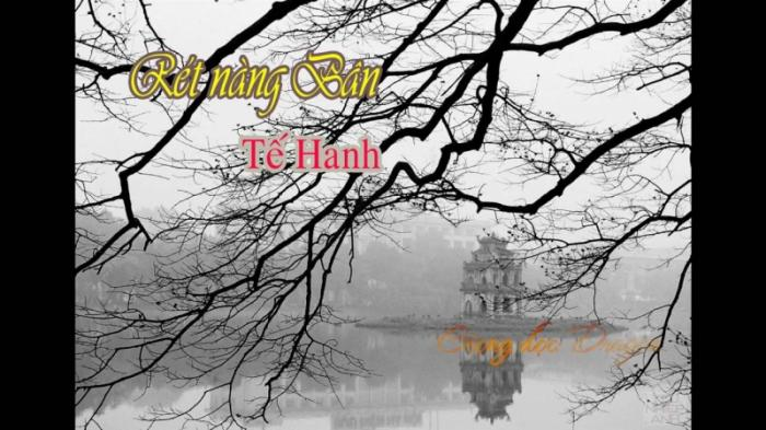 top 13 bai tho hay cua nha tho té hanh 15 - Top 13 Bài thơ hay của nhà thơ Tế Hanh