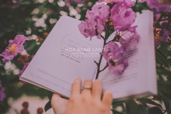top 13 bai tho hay nhat ve hoa bang lang 32 - Top 13 Bài thơ hay nhất về hoa bằng lăng