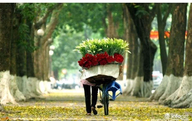 top 15 bai tho hay ve hoa loa ken thang tu 1 - Top 15 Bài thơ hay về hoa loa kèn tháng tư