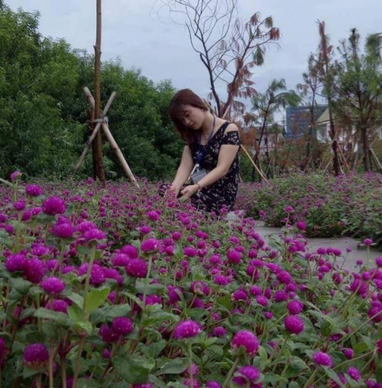 top 18 bai tho hay cua nha tho hoang nhu phuong 12 - Top 18 Bài thơ hay của nhà thơ Hoàng Như Phượng