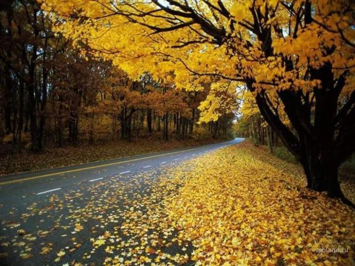 top 18 bai tho hay ve thang 9 1 - Top 18 Bài thơ hay về tháng 9