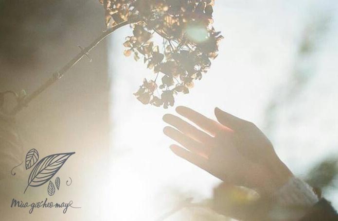top 18 bai tho hay viet ve mua gio heo may 2 - Top 18 Bài thơ hay viết về mùa gió heo may