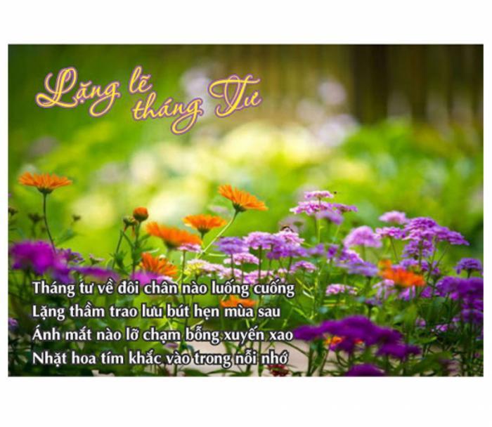 top 20 bai tho hay chao don thang tu 8 - Top 20 Bài thơ hay chào đón tháng tư