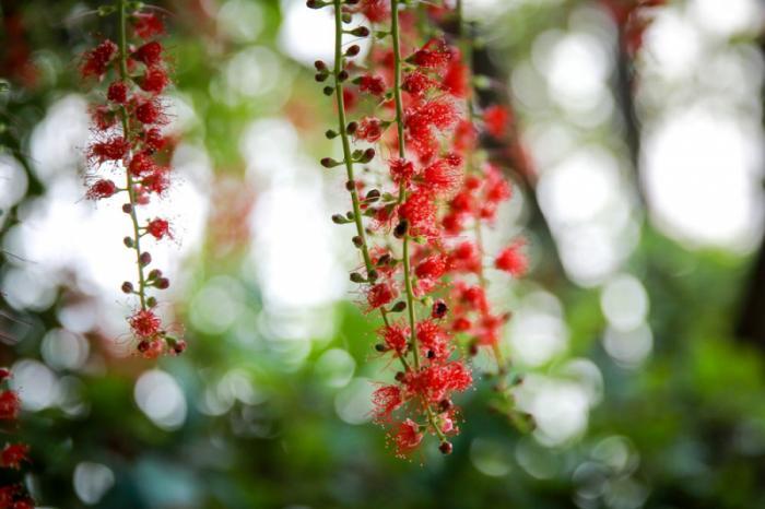top 20 bai tho hay cua nha tho lan vuong 23 - Top 20 Bài thơ hay của nhà thơ Lan Vương