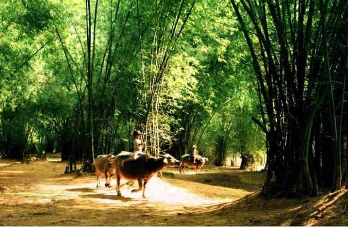 top 20 bai tho hay cua nha tho nguyen thi hong hanh 29 - Top 20 Bài thơ hay của nhà thơ Nguyễn Thị Hồng Hạnh