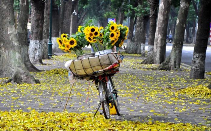 top 20 bai tho hay cua nha tho tran hai loc 15 - Top 20 Bài thơ hay của nhà thơ Trần Hải Lộc