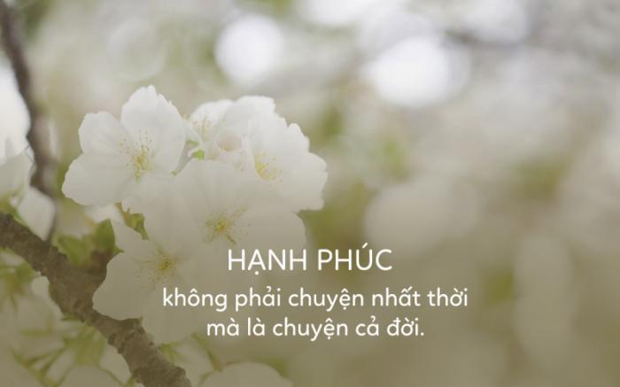 top 20 bai tho hay giup ban co them niem tin va dong luc co gang 35 - Top 20 Bài thơ hay giúp bạn có thêm niềm tin và động lực cố gắng