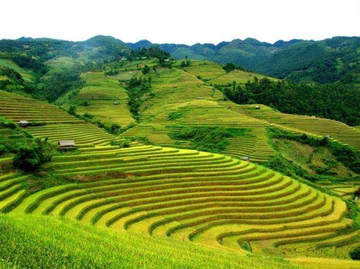 top 20 bai tho hay nhat viet ve dien bien phu 18 - Top 20 Bài thơ hay nhất viết về Điện Biên Phủ