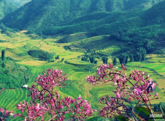 top 20 bai tho hay nhat viet ve dien bien phu 21 - Top 20 Bài thơ hay nhất viết về Điện Biên Phủ
