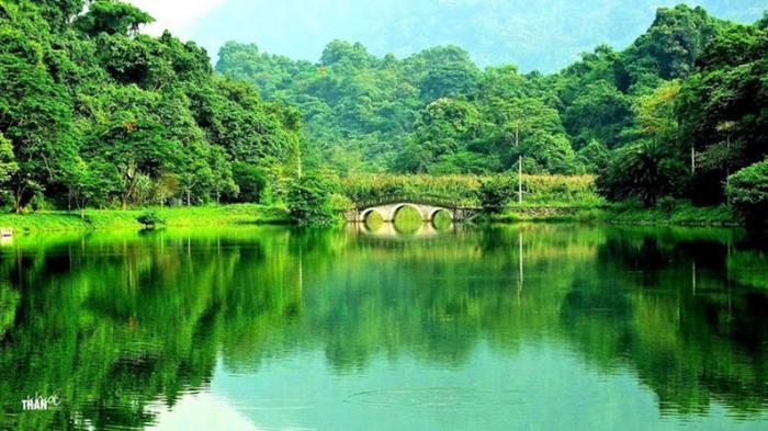 top 20 bai tho hay nhat viet ve que huong ninh binh 23 - Top 20 Bài thơ hay nhất viết về quê hương Ninh Bình