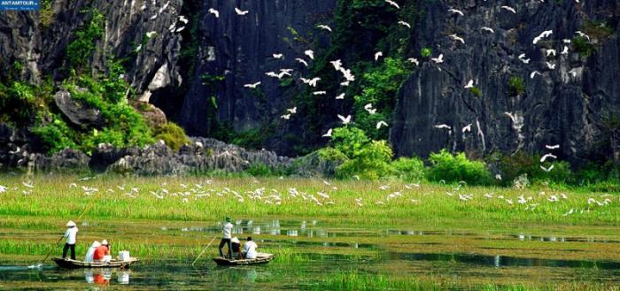 top 20 bai tho hay nhat viet ve que huong ninh binh 31 - Top 20 Bài thơ hay nhất viết về quê hương Ninh Bình