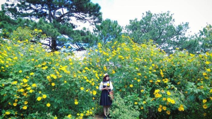 top 20 bai tho hay ve cac loai hoa thang tu 16 - Top 20 Bài thơ hay về các loài hoa tháng tư