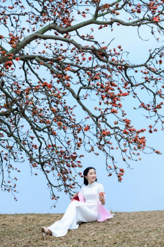 top 20 bai tho hay ve mua hoa gao thang ba 3 - Top 20 Bài thơ hay về mùa hoa gạo tháng ba