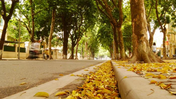 top 20 bai tho hay ve nhung ngay nang nong o ha noi 18 - Top 20 Bài thơ hay về những ngày nắng nóng ở Hà Nội