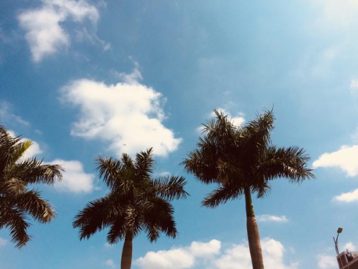 top 20 bai tho hay ve nhung ngay nang nong o ha noi 22 - Top 20 Bài thơ hay về những ngày nắng nóng ở Hà Nội