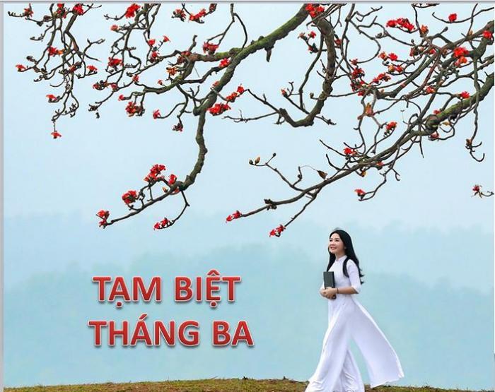 top 20 bai tho hay ve thang ba cua tac gia hoang minh tuan 18 - Top 20 Bài thơ hay về tháng ba của tác giả Hoàng Minh Tuấn