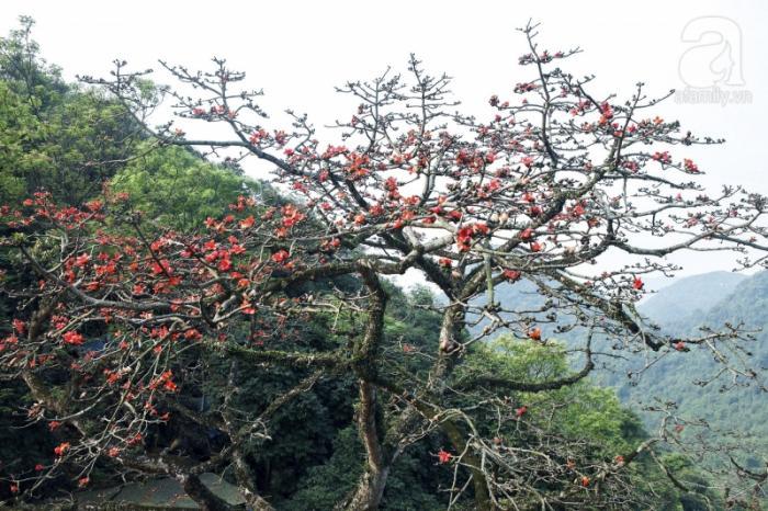 top 20 bai tho hay ve thang ba cua tac gia hoang minh tuan 6 - Top 20 Bài thơ hay về tháng ba của tác giả Hoàng Minh Tuấn