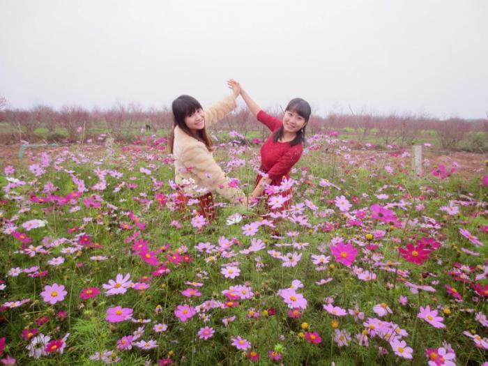 top 20 bai tho hay viet tang cho nhung nguoi sinh nhat thang 12 18 - Top 20 Bài thơ hay viết tặng cho những người sinh nhật tháng 12