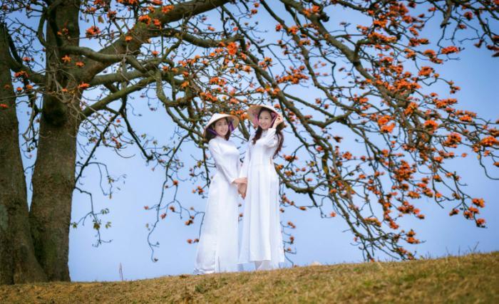 top 20 bai tho hay viet ve khoanh khac giao mua xuan ha 4 - Top 20 Bài thơ hay viết về khoảnh khắc giao mùa xuân hạ