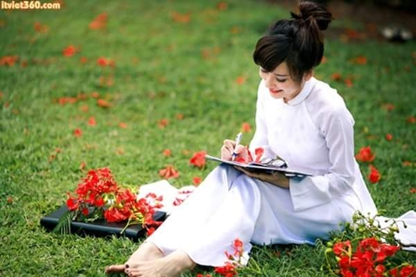 top 20 bai tho hay viet ve khoanh khac giao mua xuan ha 7 - Top 20 Bài thơ hay viết về khoảnh khắc giao mùa xuân hạ