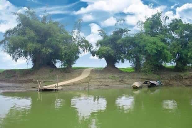 top 23 bai tho hay mung que huong dat nuoc doi moi 25 - Top 23 Bài thơ hay mừng quê hương đất nước đổi mới