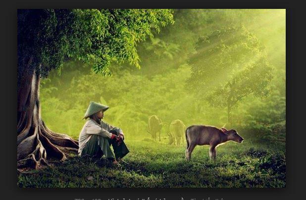 top 23 bai tho hay mung que huong dat nuoc doi moi 30 - Top 23 Bài thơ hay mừng quê hương đất nước đổi mới