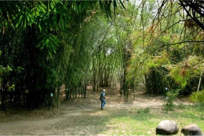 top 23 bai tho hay mung que huong dat nuoc doi moi 31 - Top 23 Bài thơ hay mừng quê hương đất nước đổi mới