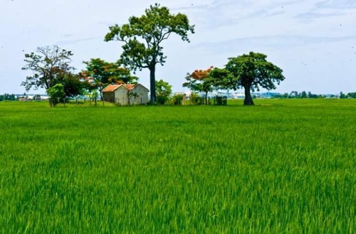 top 23 bai tho hay mung que huong dat nuoc doi moi 33 - Top 23 Bài thơ hay mừng quê hương đất nước đổi mới