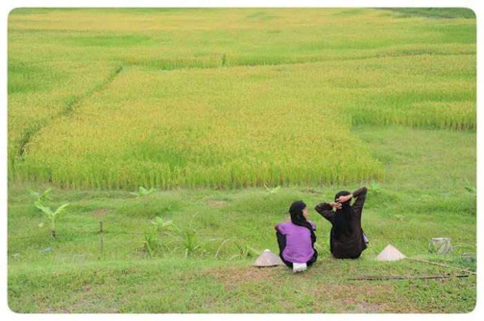 top 23 bai tho hay mung que huong dat nuoc doi moi 35 - Top 23 Bài thơ hay mừng quê hương đất nước đổi mới