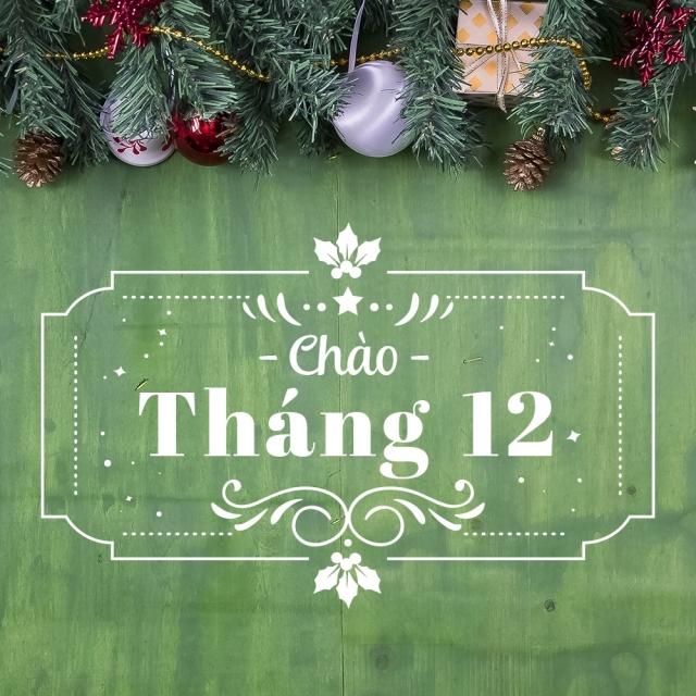top 34 bai tho hay viet ve thang 12 28 - Top 34 Bài thơ hay viết về tháng 12