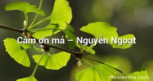 Cảm ơn má – Nguyễn Ngoạt