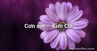 Cơn sốt – Kim Chi