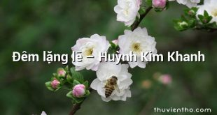 Đêm lặng lẽ – Huỳnh Kim Khanh