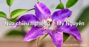 Nửa chiều nghiêng – My Nguyễn